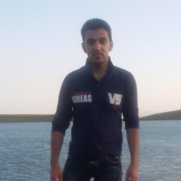 armin, 27, Esfahan, Iran