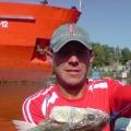 Анатолий, 47, Vidnoye, Russian Federation