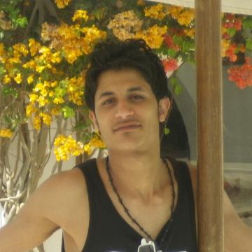 mohamed gamal, 28, Cairo, Egypt