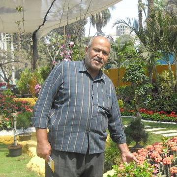 medo, 64, Cairo, Egypt
