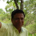 Kumar, 51, Dubai, United Arab Emirates