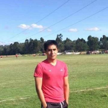Ibrahimovic Ibra, 34, Mexico, Mexico