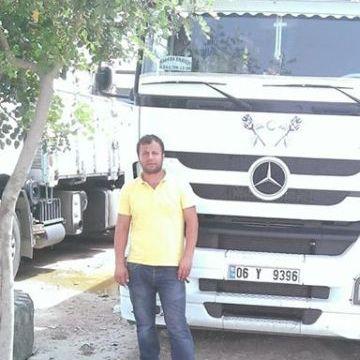 alican , 36, Istanbul, Turkey