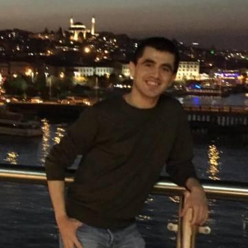 David, 28, Istanbul, Turkey