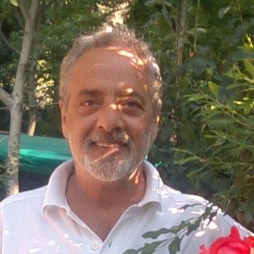 Ibrahim Özserbest, 50, Izmir, Turkey