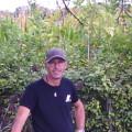 john, 51, Sittard, Netherlands