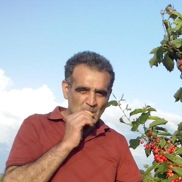 Ali Altınel, 50, Tokat, Turkey