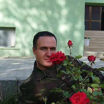 Sash, 37, Saint Petersburg, Russia