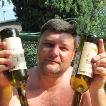 владимир, 46, Smolensk, Russia