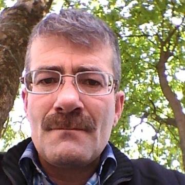 harun gulec, 44, Istanbul, Turkey