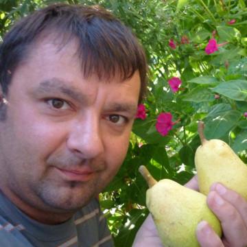 Денис, 39, Essentuki, Russia
