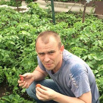 Слава, 35, Artem, Russia