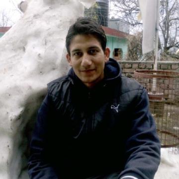 Amit Singh, 27, Shimla, India