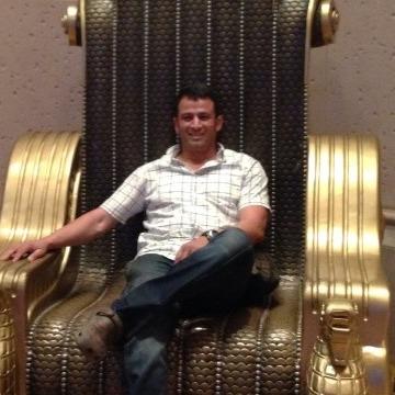 tom, 41, Cairo, Egypt