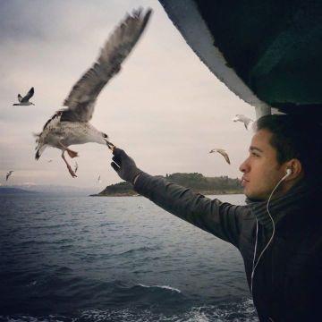 Alhussien, 32, Cairo, Egypt