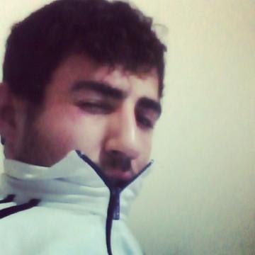 Sinan Özkırmacı, 24, Turkey, United States