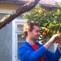 Mitch, 37, Budva, Montenegro