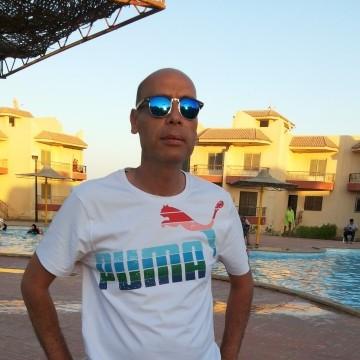 Avocat, 48, Cairo, Egypt