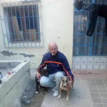 Onofreiu Aurelian Ionut, 36, El Ejido, Spain