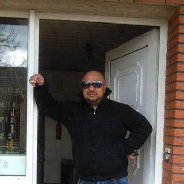 Radics Baxy, 35, Surwold, Germany
