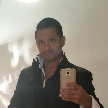 Luis alfonso , 32, Radebeul, Germany