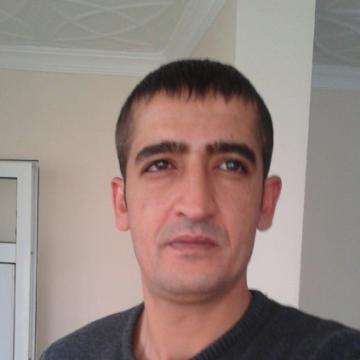 halil tali, 37, Istanbul, Turkey