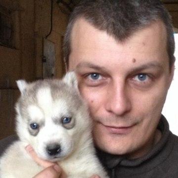Lexx, 37, Kharkov, Ukraine