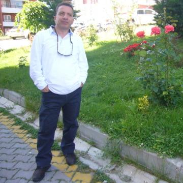 serdar , 48, Ankara, Turkey