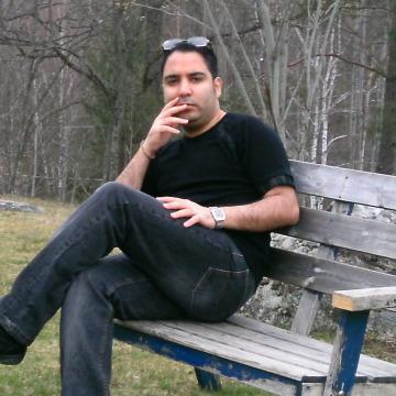 Shaahin, 31, Stockholm, Sweden