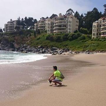 Alvaro Ed Toloza Gajardo, 36, Concepcion, Chile