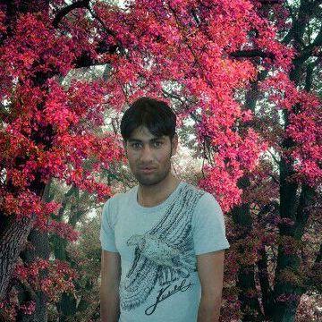 shoyab, 22, Bisha, Saudi Arabia