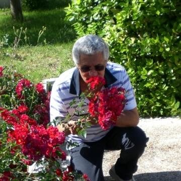 Leonardo Modugno, , Bari, Italy