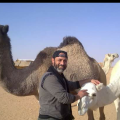 Ahmed Ali, 60,
