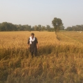 rashid khan, 33, Chandigarh, India