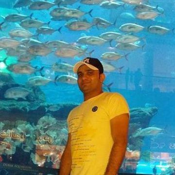 alimnaqvi, 33, Dubai, United Arab Emirates