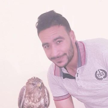 Amr Mahmoud, 27, Giza, Egypt