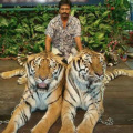 Harrish, 37, Mumbai, India