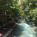 Ask me, 50, Tehran, Iran