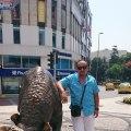 erkan yalçın, 40, Bolu, Turkey