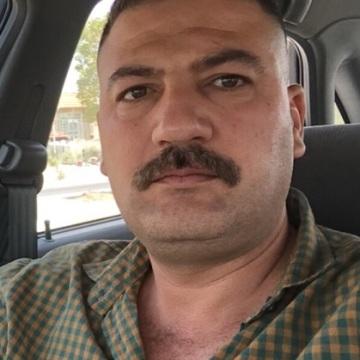 Yosif - mohayman, 39, Baghdad, Iraq