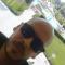 Ahmed Bakier, 31, Cairo, Egypt