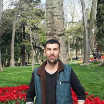 gökbey, 34, Istanbul, Turkey