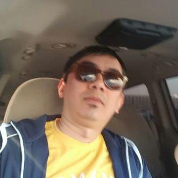 Tima, 34, Dubai, United Arab Emirates