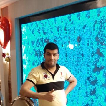 وليد الحسينى, 35, Cairo, Egypt