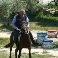 Zübeyir, 54, Izmir, Turkey