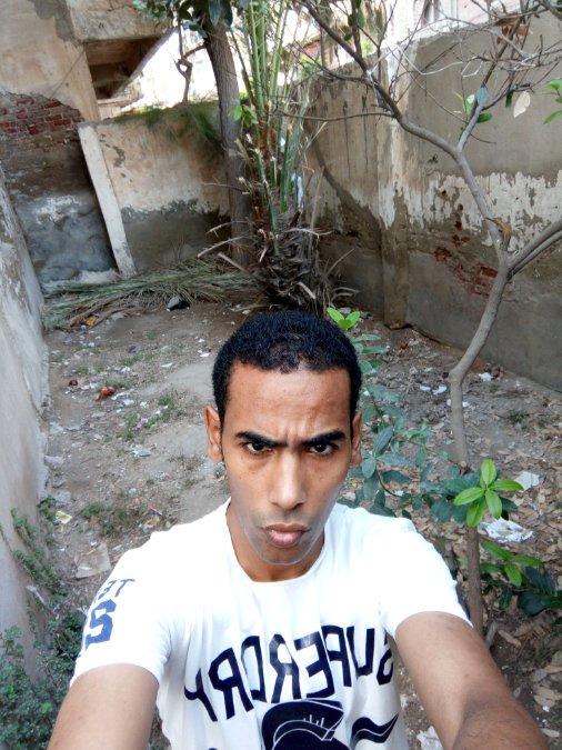 Hani Khalil, 34, Alexandria, Egypt