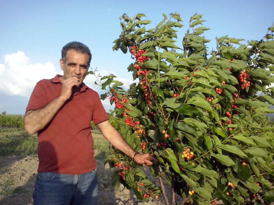 Ali Altınel, 53, Tokat, Turkey