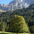 Adrianus, 55, Bern, Switzerland