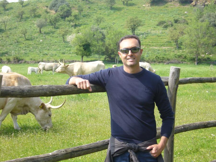 stef, 45, Grosseto, Italy