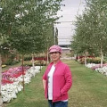 lily, 53, Bishkek, Kyrgyzstan
